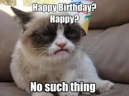 Grumpy Cat No Memes - happy birthday grumpy cat no such thing memes quickmeme