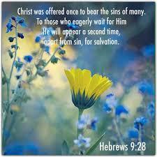 488 hebrews images bible scriptures bible