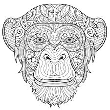 monkey coloring pages adults 31902