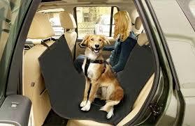 protection siege auto chien siege auto pour chien siege auto chien sur enperdresonlapin