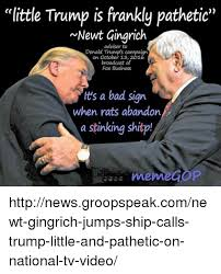 Newt Gingrich Meme - little trump is frankly pathetic newt gingrich adviser to donald