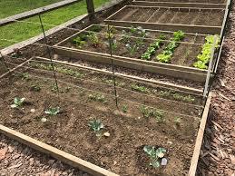connecticut home gardening vegetable garden in april