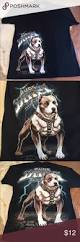 american pitbull terrier traits fitpit conditioned pitbulls pinterest pitbull and pit bull