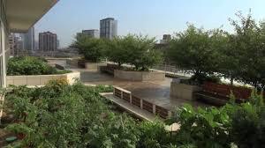 Chicago Botanic Garden Restaurant Chicago Botanic Garden Creates Largest Rooftop Farm In
