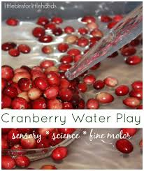 Cranberry For Thanksgiving Cranberry Science Thanksgiving Activities Fine Motor Play