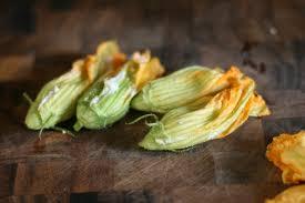 stuffed zucchini flowers recipe eliza domestica
