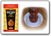 Kill Bed Bugs Kill Bed Bugs Safe Effective Bed Bug Treatment And Prevention