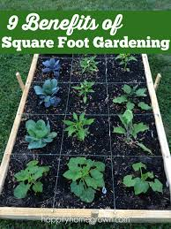 square foot 9 benefits of square foot gardening happily homegrown