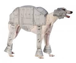 Extra Large Dog Costumes Halloween 30 Amazing Dog Costumes Halloween Information Vine