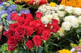 The Month Of June Flower - official flower of the month of june southeast agnet