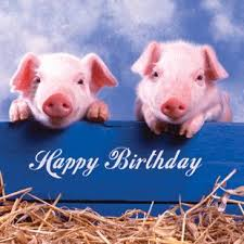 pigs happy birthday card 2 60 a great range of pigs happy