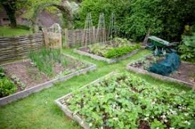 a healthy garden is a rotated garden crop rotation and record