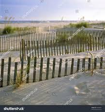 sand dunes beach grasses sunset gulf stock photo 52068685
