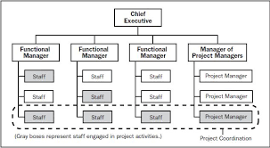 functional managers disfunctional suboptimization thriving on systems