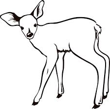 coloring blog archive deer coloring