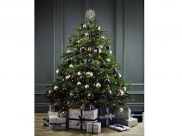 14 best real christmas trees the independent
