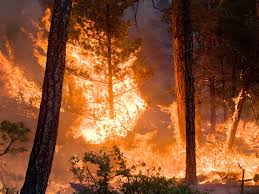 National Wildfire Activity by Nasa Climate Models Project Increase In U S Wildfire Risk