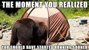 bear hug meme on imgur