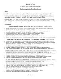 cfo resume sample chief financial officer resume sample cfo cover