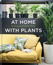 at home with plants mcqueens blog