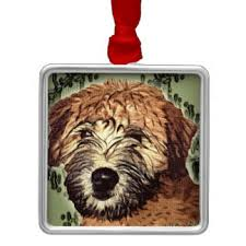 soft coated wheaten terrier gifts on zazzle