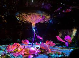 Nicklee Cirque Du Soleil U0027s Toruk U2013 The First Flight Best Of Toronto