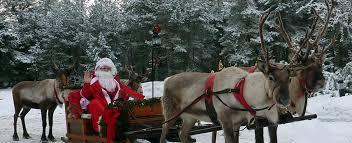 christmas reindeer christmas reindeer a beautiful sleigh pulling reindeer for