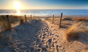 netherlands beaches map discover the coast hotels best things to do
