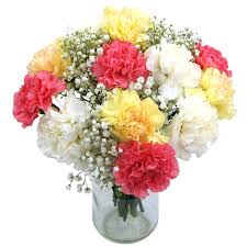 Birth Flower Of January - january birth flowers carnations clare florist blog