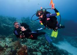 padi open water diver course divemaster academy cozumel mexico
