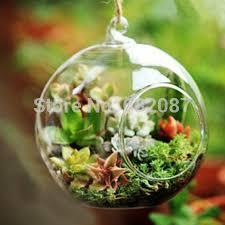 aliexpress com buy diameter u003d 20cm big capacity glass globe with