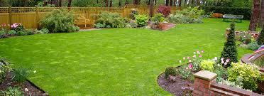 Garden Design Services Bankcliffe Garden Design And Landscape Garden Design Images