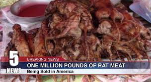 rat cuisine million pounds of rat were sold as chicken wings in u s a be