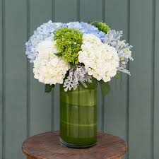 white hydrangeas blue and white hydrangeas in metairie la grow with us florist