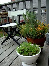 balcony amazing balcony garden ideas vegetables balcony garden