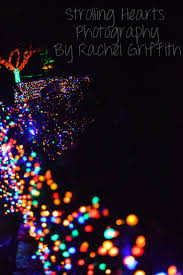 Zoo Light Portland by Strolling Hearts Photography By Rachel Griffith Zoo Lights