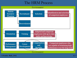 chapter 12 human resource management hrm prentice hall ppt