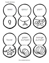 pumpkin pumpkin by jeanne titherington lesson plans activities