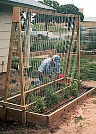 4x8 Raised Bed Vegetable Garden Layout Raised Bed Garden Layout The Gardens