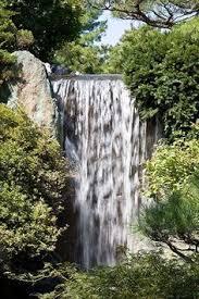 Botanical Gardens St Louis Hours Missouri Botanical Gardens And Children S Garden Things To Do