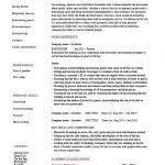 Bartender Resume Templates Bartending Resume Template Professional Bartender Resume Templates