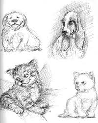 stephen lawson u0027s drawing on inspiration sketching cats and dogs