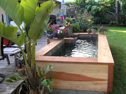 gallery of small garden pond design ideas perfect homes interior