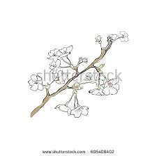 peach flowers blossom doodle illustration vector download free