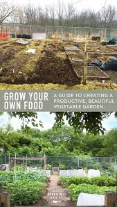 Tips For Planting A Vegetable Garden by 20 Simple Gardening Tips For Creating A Beautiful And Productive