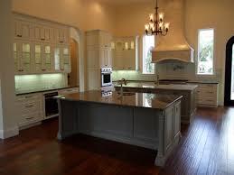 kitchen cabinet brand kitchen amazing luxury kitchen cabinets traditional with cabinet