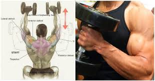 Dumbbell Bench Press Form Dumbbell Bench Press Technique U0026 Common Mistakes Fitness And Power