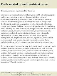 Auditor Resume Sample Sample Resume For Auditor Fields Related To Audit Sample Auditor