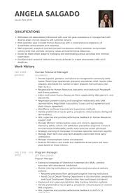 Program Management Resume Examples by Human Resource Manager Resume Samples Visualcv Resume Samples