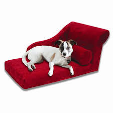 Floating Dog Bed Living Room Brilliant Chaise Lounge Luxury Dog Bed Pet Decor